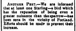 Established August 1842. (1904, September 16). Portland Guardian (Vic. : 1876 - 1953), p. 2 Edition: EVENING. Retrieved September 16, 2011, from http://nla.gov.au/nla.news-article63689870