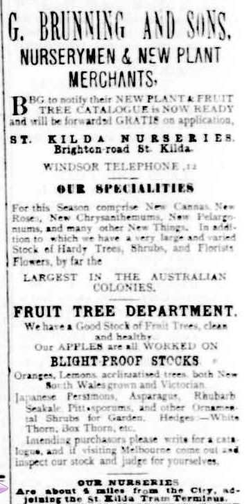 Advertising. (1894, August 17). Portland Guardian (Vic. : 1876 - 1953), p. 4 Edition: EVENING. Retrieved March 29, 2013, from http://nla.gov.au/nla.news-article65395732
