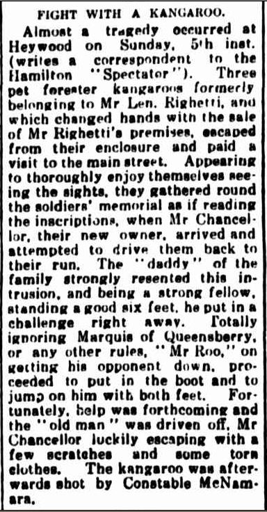 FIGHT WITH A KANGAROO. (1922, November 13). Portland Guardian (Vic. : 1876 - 1953), p. 2 Edition: EVENING.. Retrieved February 25, 2013, from http://nla.gov.au/nla.news-article64026993