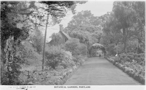 PORTLAND BOTANICAL GARDENS.  Image courtesy of the State Library of Victoria http://handle.slv.vic.gov.au/10381/66929