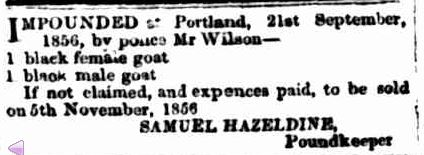 Advertising. (1856, October 17). Portland Guardian and Normanby General Advertiser (Vic. : 1842 - 1876), p. 3 Edition: EVENING.. Retrieved June 3, 2013, from http://nla.gov.au/nla.news-article64567048