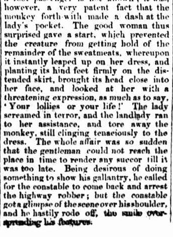 NOVEL HIGHWAY ROBBERY. (1865, October 14). Gippsland Times (Vic. : 1861 - 1954), p. 1 Edition: Morning., Supplement: SUPPLEMENT TO The Gippsland Times.. Retrieved November 19, 2013, from http://nla.gov.au/nla.news-article65366052