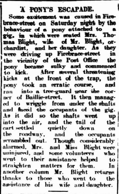 A PONY'S ESCAPADE. (1909, January 19). The Horsham Times (Vic. : 1882 - 1954), p. 3. Retrieved December 16, 2013, from http://nla.gov.au/nla.news-article72825888