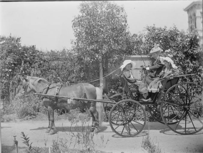 "Mary Lloyd Tayler and two of her daughters in a buggy drawn by pony at ""Mynda"". c1890-1910.  Image Courtesy of the State Library of Victoria.  Image no. H83.94/156 http://handle.slv.vic.gov.au/10381/16217"