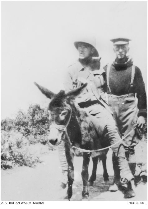 Image Courtesy of the Australian War Memorial. Image no.  P03136.001 http://www.awm.gov.au/collection/P03136.001