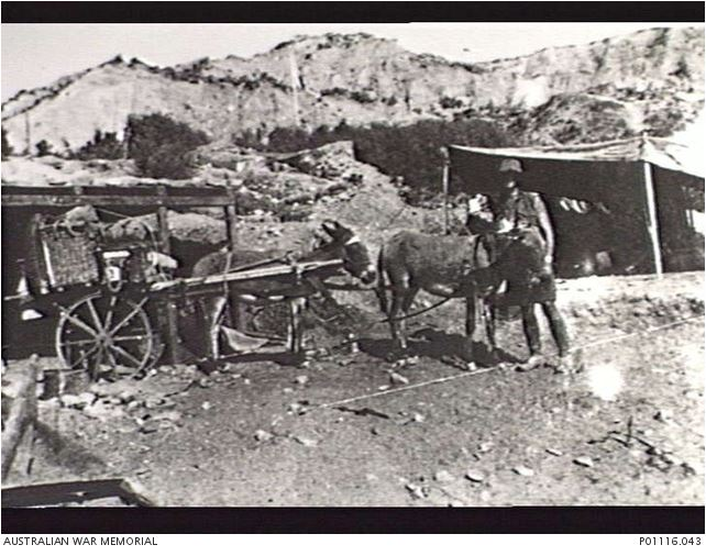 Image Courtesy of the Australian War Memorial.  Image no. P01116.043 http://www.awm.gov.au/collection/P01116.043