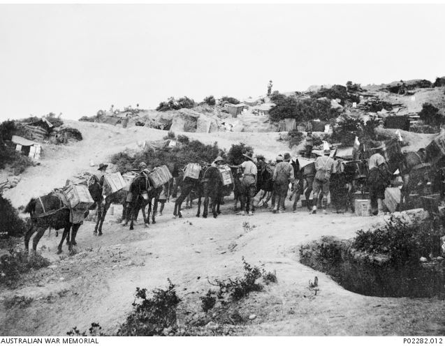 Image Courtesy of the State Library of Victoria. Image no, P02282.012 http://www.awm.gov.au/collection/P02282.012