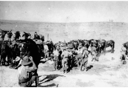 4th Light Horse in Palestine c 1915. Image courtesy of Picture Queensland, State Library of Queensland Image no. 182314 http://trove.nla.gov.au/version/47940236