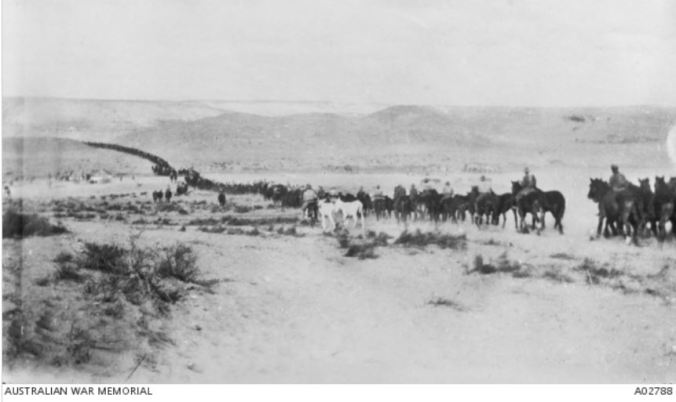 The Road to Beersheba (Oct 1917). Image courtesy of the Australian War Memorial Image no. A02788 A02788