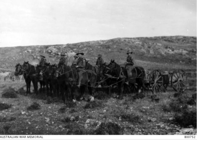 4th LIGHT HORSE TRANSPORT. Image Courtesy of the Australian War Memorial. Image no. B00752 http://www.awm.gov.au/collection/B00752/