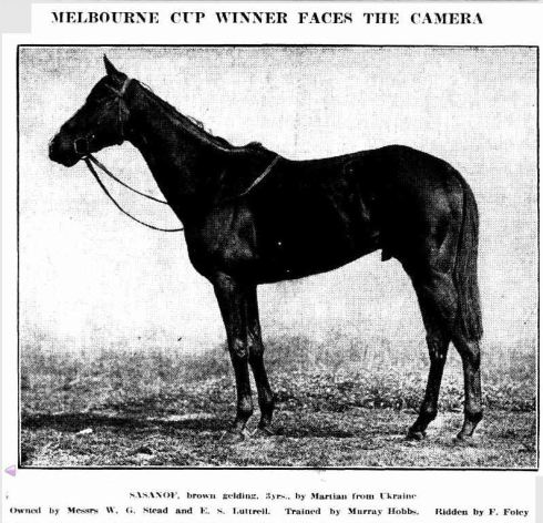 """MELBOURNE CUP WINNER FACES THE CAMERA."" Winner (Melbourne, Vic. : 1914 - 1917) 15 Nov 1916:   ."