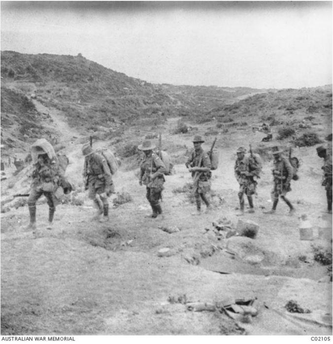 AWM. 24th Battalion Gallipoli