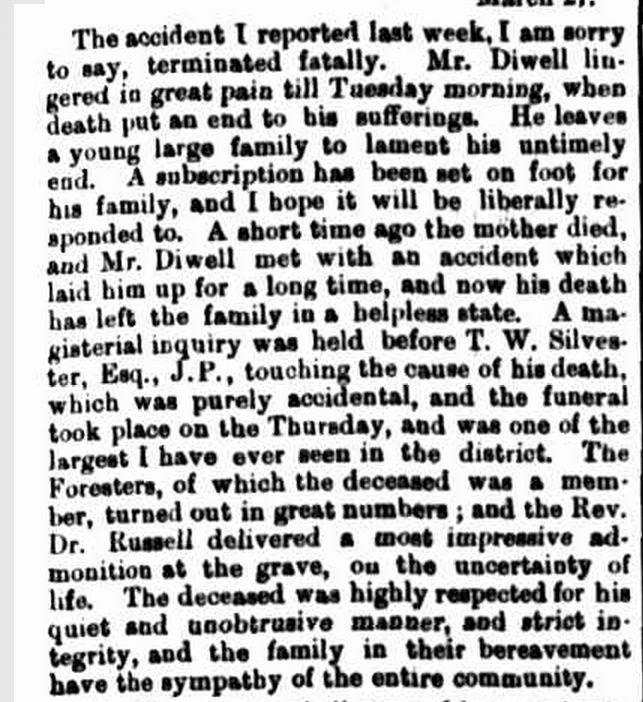 """MERINO."" Hamilton Spectator (Vic. : 1870 - 1873; 1914 - 1918) 29 Mar 1871."
