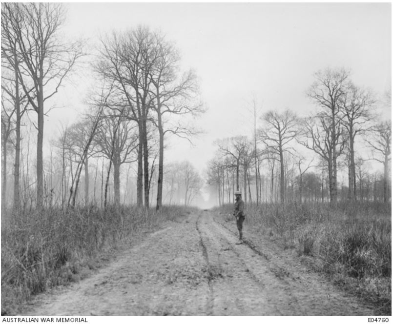NIEPPE FOREST, Nord Pas de Calais, Nord, France. 18 April 1918. Image courtesy of the Australian War Memorial https://www.awm.gov.au/collection/E04760/