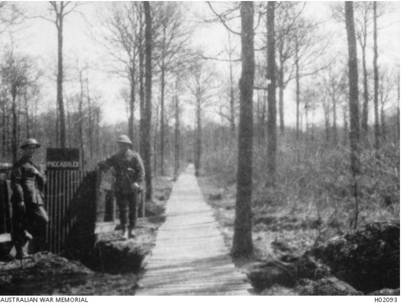 PLOEGSTREET WOOD, BELGIUM c1917. Image courtesy of the Australian War Memorial https://www.awm.gov.au/collection/H02093/