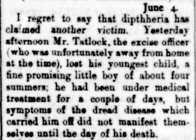 """Hamilton."" Portland Guardian (Vic. : 1876 - 1953) 6 Jun 1887: 2 Edition: EVENING. Web. ."