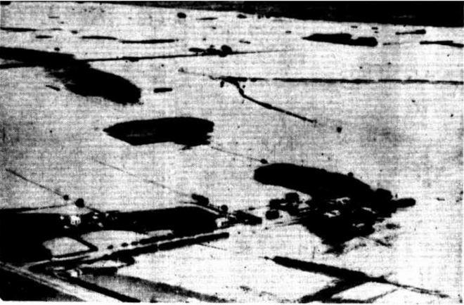 """TOWNSHIP ISOLATED"" Examiner (Launceston, Tas. : 1900 - 1954) 21 March 1946: ."