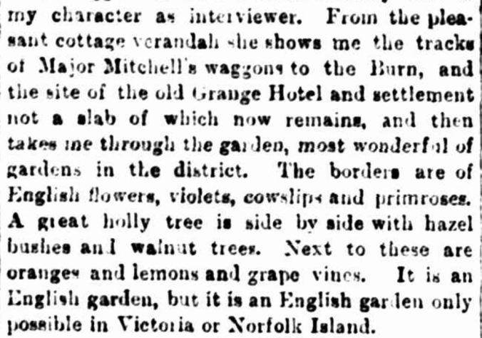 """HAMILTON"" Leader (Melbourne, Vic. : 1862 - 1918) 25 November 1893: ."